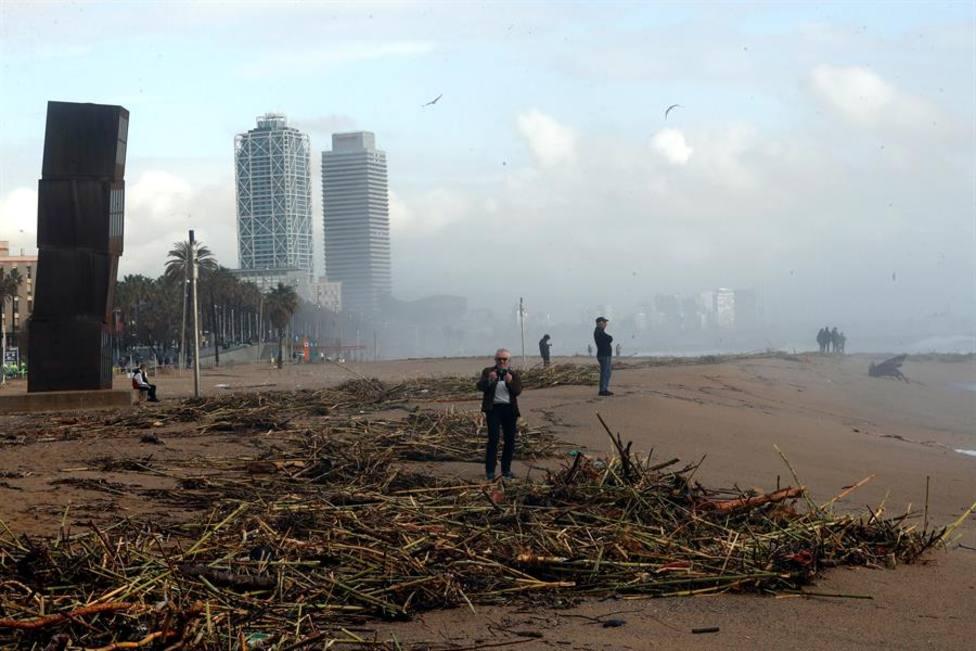 """Los expertos creen que habrá más borrascas como """"Gloria"""" que volverán a arrasar cultivos y playas"""