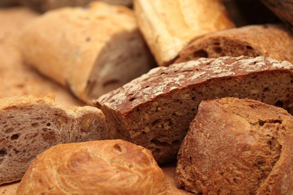 Evangelio 15 febrero: ¿Cuántos panes tenéis?