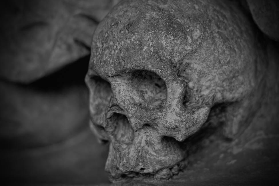 ctv-zoe-skull-77950 1920