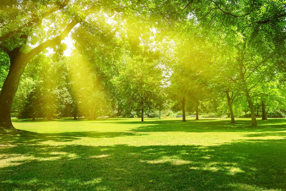 Sábado de cielos soleados y temperaturas veraniegas
