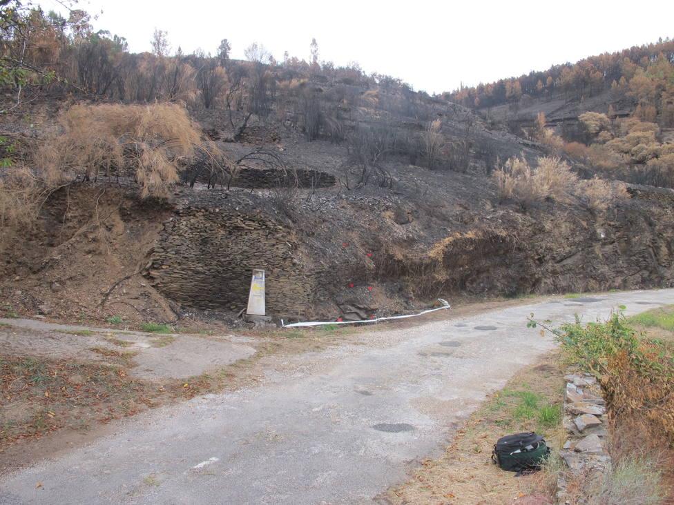 Monte arrasado por el fuego en Quiroga