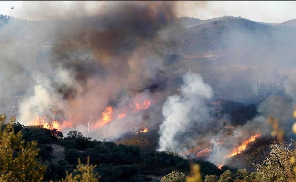 Desalojadas 60 personas por un incendio forestal en Sevilla