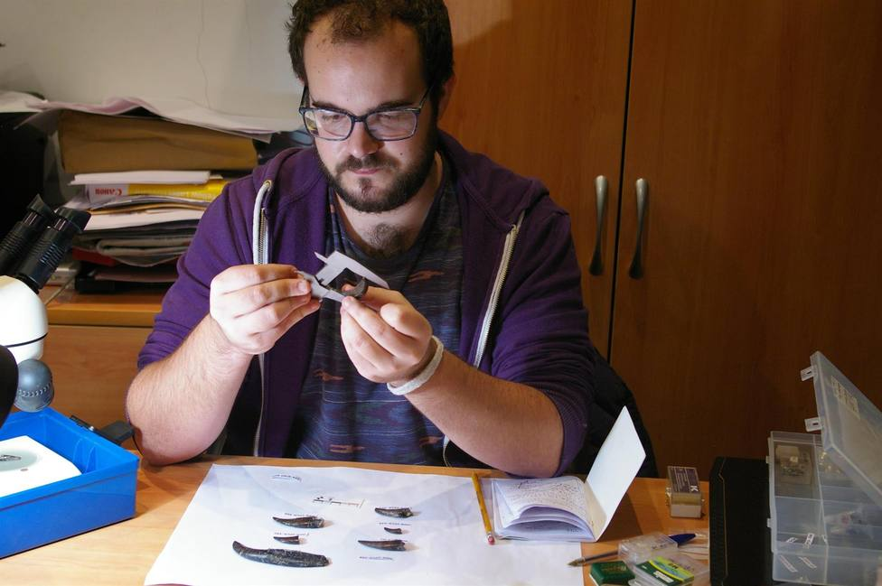 Investigan el conjunto de dientes de dinosaurios carnívoros de Torrelara (Burgos)