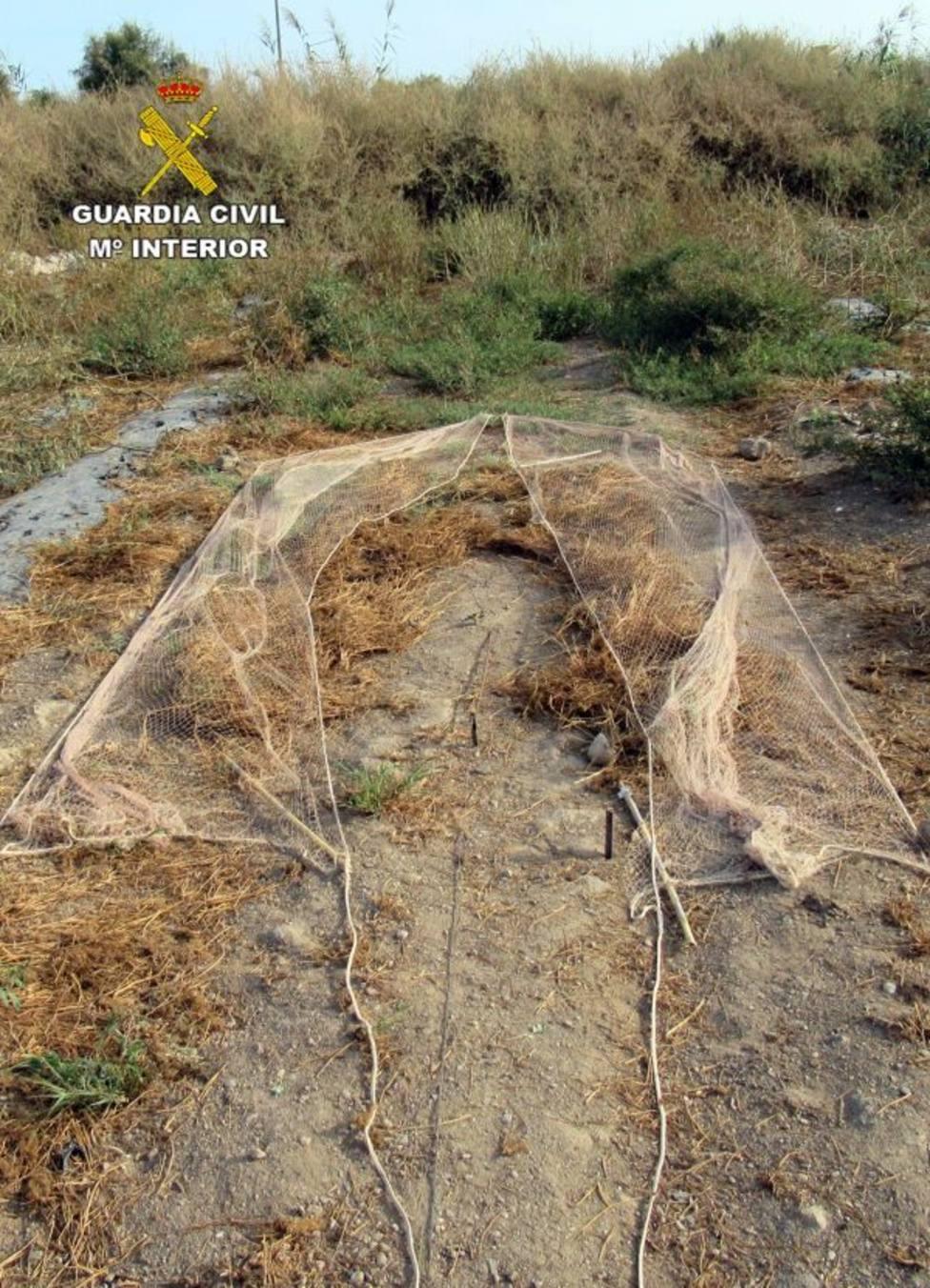 La Guardia Civil investiga a un vecino de Águilas por la captura ilegal de aves fringílidas