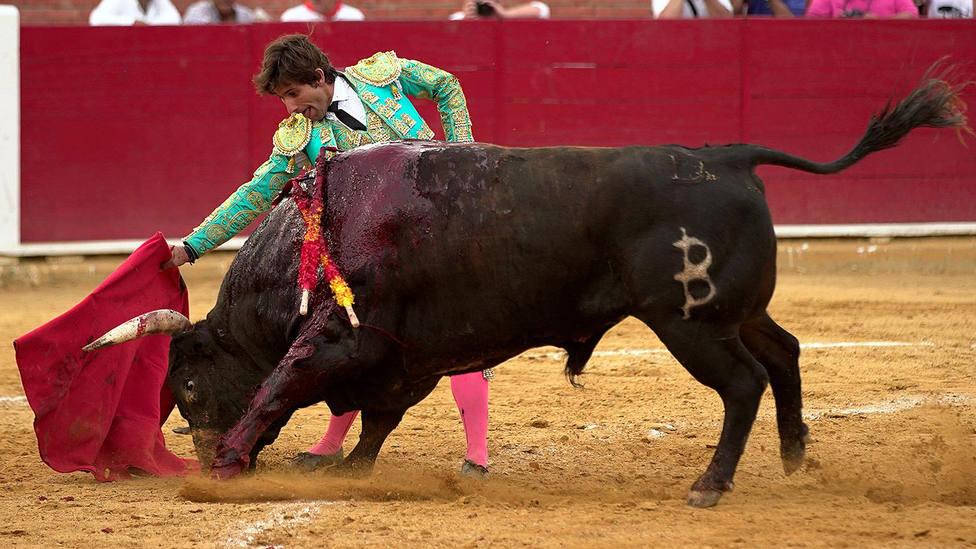 Alberto Lamelas ante un toro de Baltasar Ibán en la pasada Feria del Ángel de Teruel