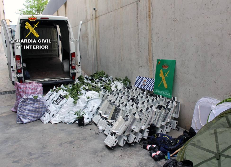 Desmantelan un invernadero con 800 plantas de marihuana en Puerto Lumbreras y detienen a su responsable