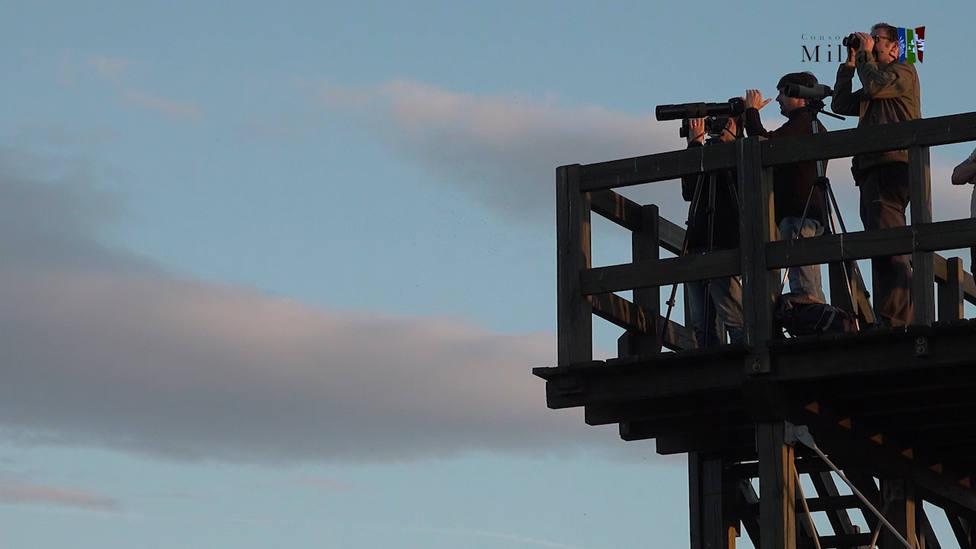ctv-0ix-observadors-daus-a-la-torre-de-les-llacunes-del-millars-1