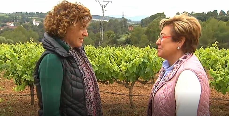Montserrat pasa su jornada de reflexión dando un paseo rural en familia en Sant Sadurní dAnoia (Barcelona)