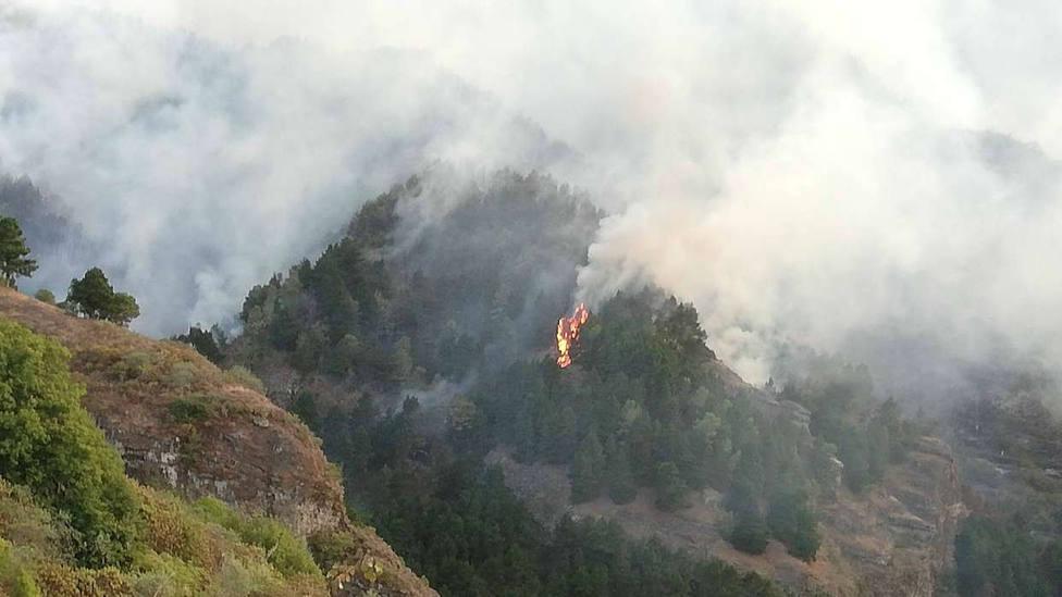 Gran Canaria: uno de los peores incendios de la última década