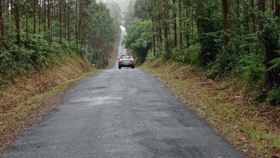 Carretera de titularidad municipal desbrozada - FOTO: Concello de Cerdido