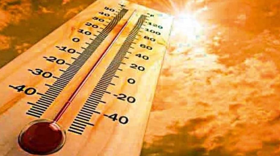 Consejos para soportar la ola de calor