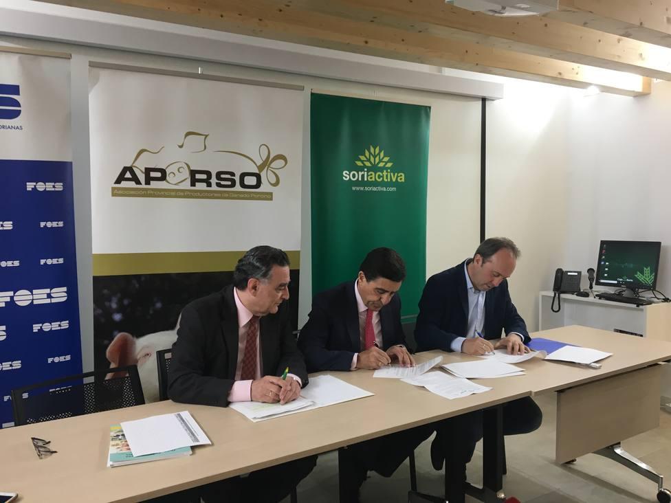 Firma del convenio entre la Fundación Soriactiva, Caja Rural de Soria y la Aporso