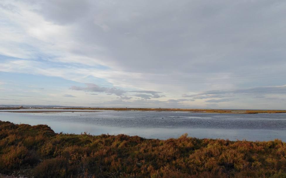 La flora y la fauna del Mar Menor habría muerto masivamente en el 80% de las aguas tras la DANA