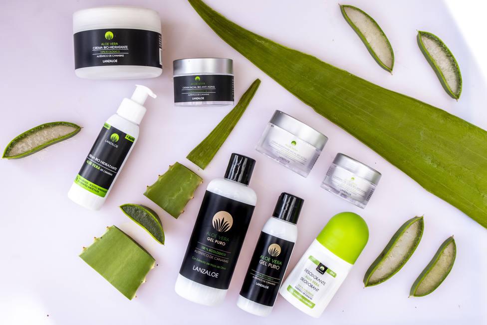 Distintos productos de Aloe Vera