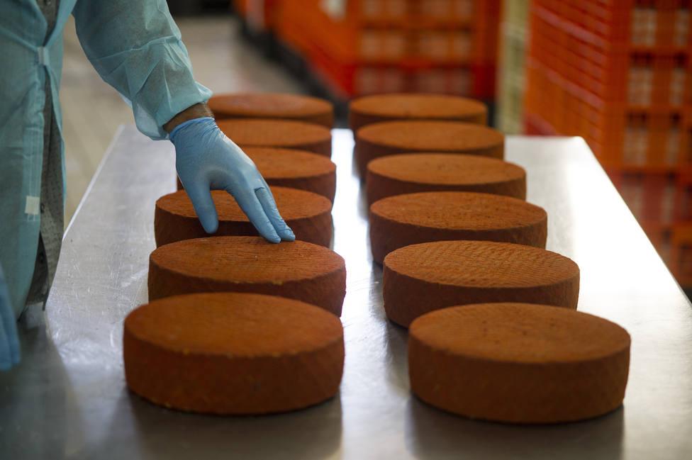 El Grupo Ganaderos de Fuerteventura se consolida como la mayor productora de queso majorero de la isla