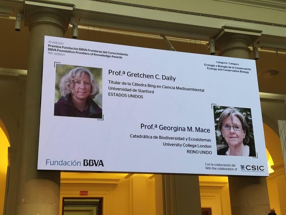 Gretchen Daily y Georgina Mace, Premios Fundación BBVA por ser visionarias en la lucha contra la pérdida de especies