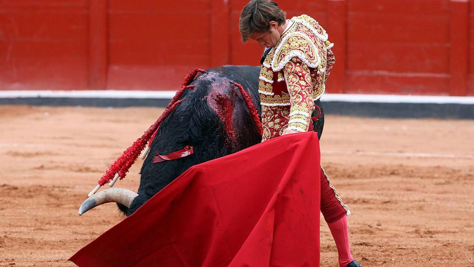 Natural de El Juli durante la faena de muleta al segundo toro del festejo de este sábado en Salamanca