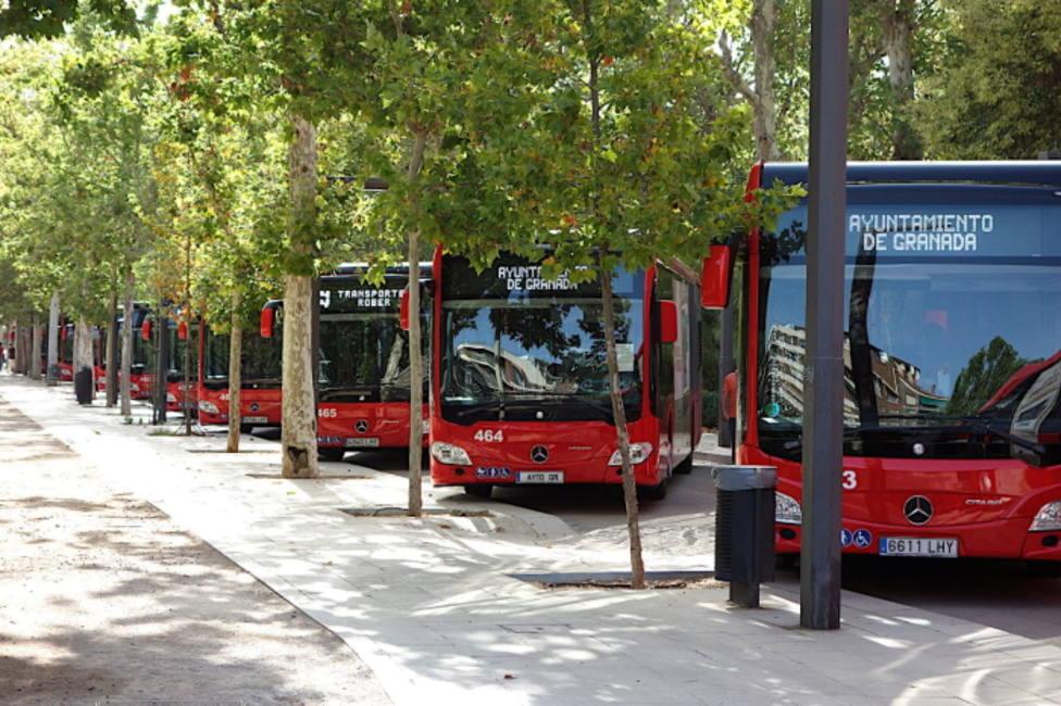 ctv-sjf-autobuses-rober-paseo-salon