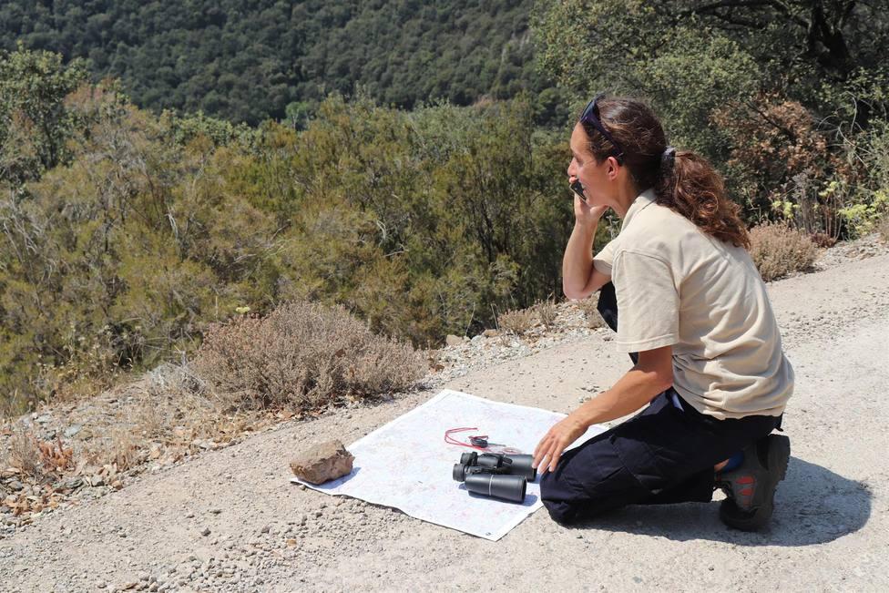 La provincia de Barcelona registra un centenar de incendios forestales en un mes