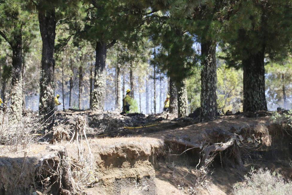 Canarias realiza un reconocimiento de gratitud a quienes han trabajado contra los incendios estos días