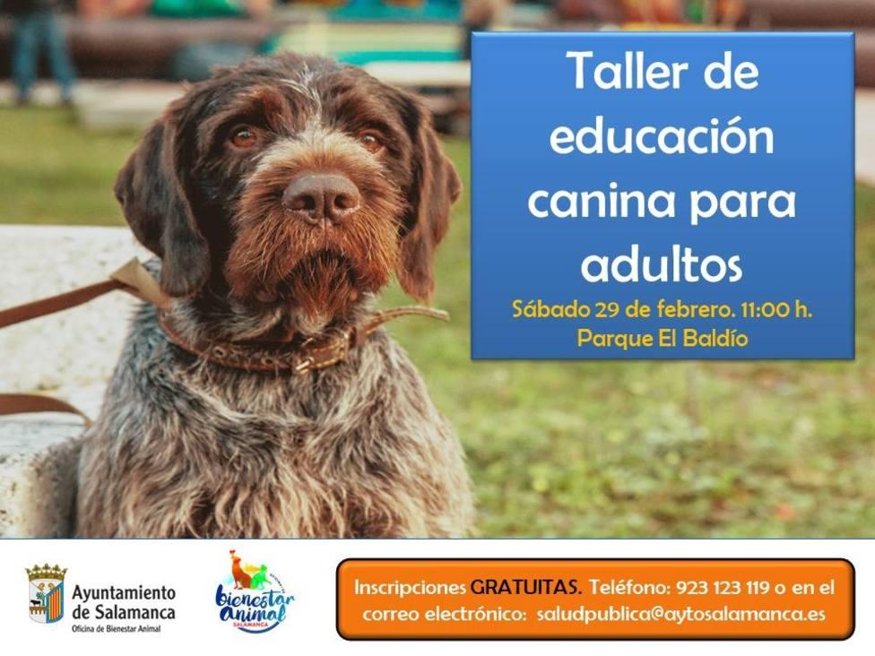 Foto anunciador de los talleres de adiestramiento canino