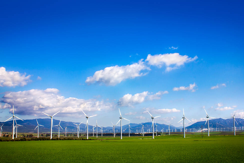 Llega la revolución verde a Andalucía para luchar contra el cambio climático y l-shutterstock 195038888