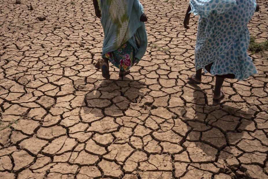 Las ONG llaman a invertir más en resiliencia y desarrollo para que el hambre no sea inevitable en el Sahel