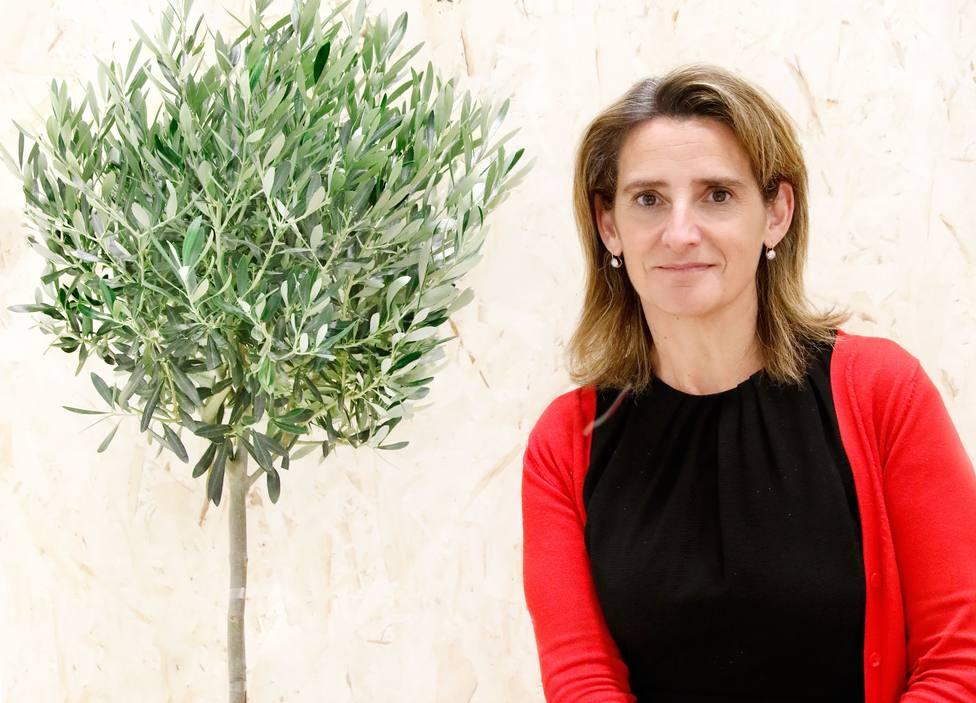 Teresa Ribera avanza que España manifestará su voluntad de aumentar la ambición en la lucha climática