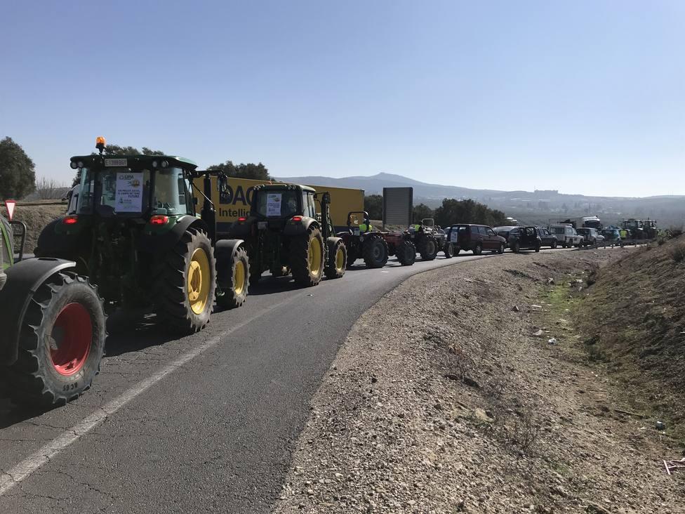 Más de 5.000 tractores recorren la A-45 en Lucena (Córdoba) ante la situación agónica del sector agrario