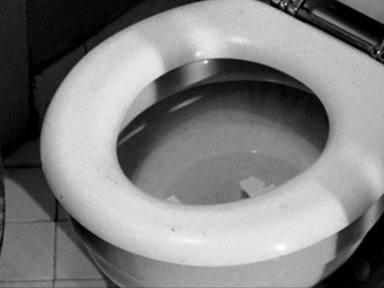 ¿Por qué nunca debes tirar de la cadena del inodoro con la tapa abierta?
