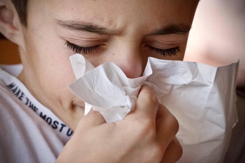 Los médicos aconsejan a los alérgicos madrileños salir con mascarilla antes los altos niveles de polen