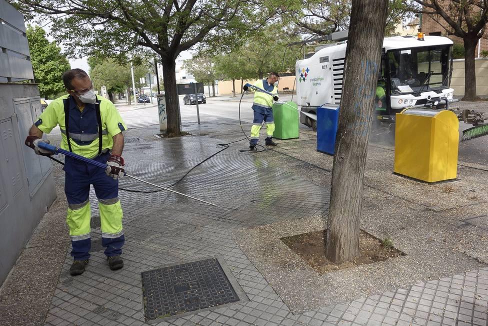 Granada2031.- Impulsan un plan de limpieza de semillas para evitar la expansión del polen que perjudica a los alérgicos