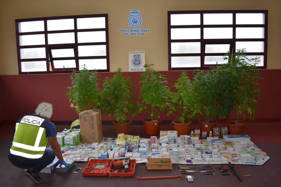 La Policía Nacional incauta varias plantas de cannabis y recupera una gran cantidad de medicamentos robados