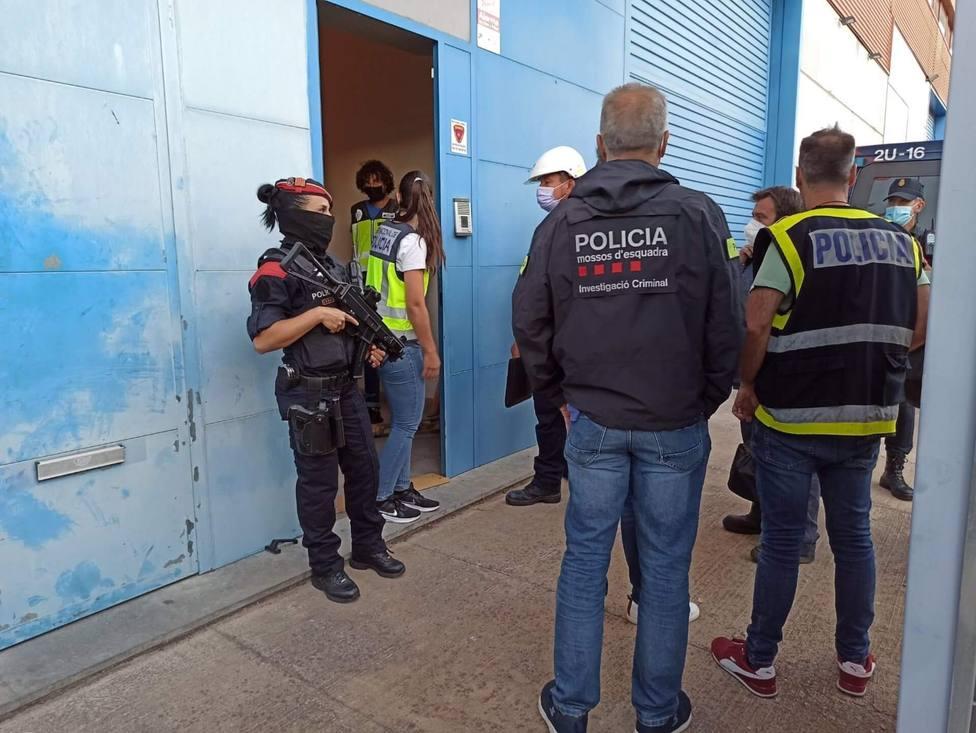 Detenidas 71 personas en un operativo contra el tráfico de marihuana en Catalunya