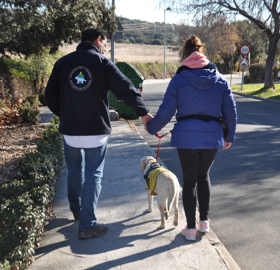 Perros para el tratamiento del Alzheimer