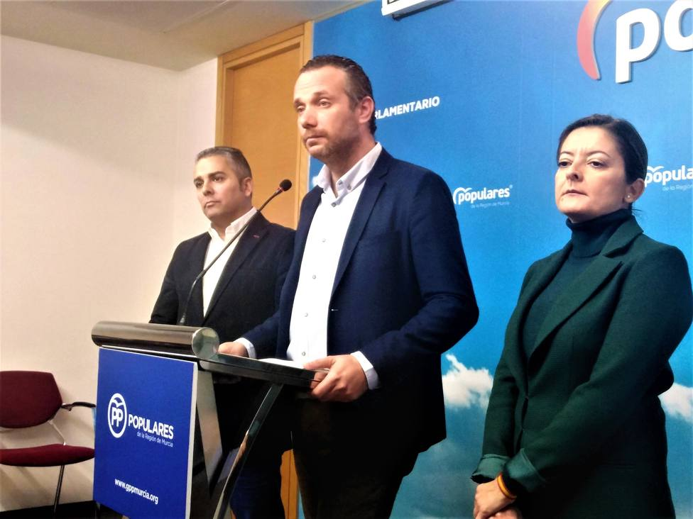 El PP solicta la comparecencia en la Asamblea del presidente de la CHS