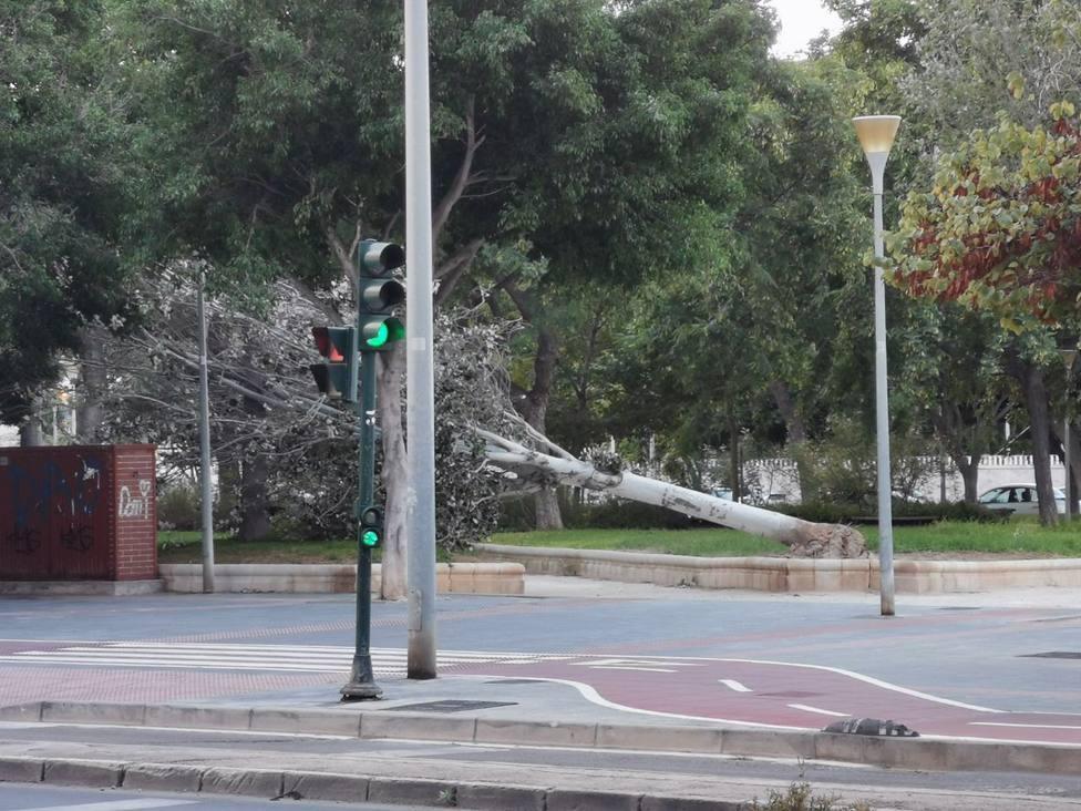La borrasca Alex deja dos heridos en Níjar y tumba árboles en Almería