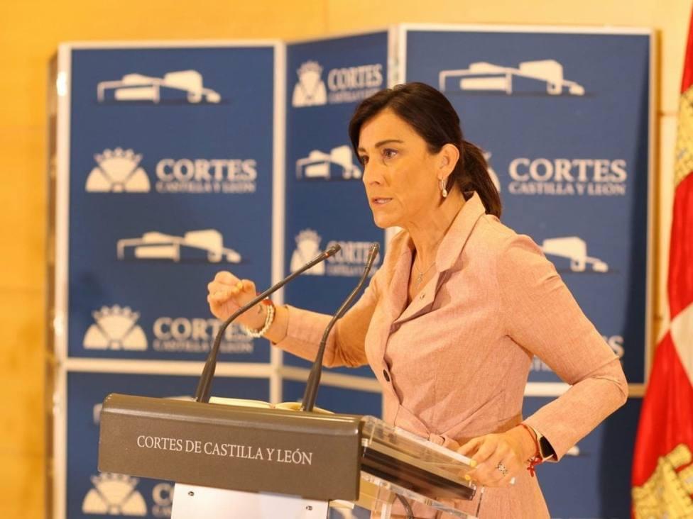 PSOE ana sanchez