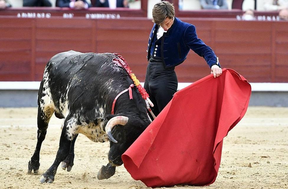 Extraordinario natural de El Juli al toro de Garcigrande que ha lidiado este domingo en Las Ventas