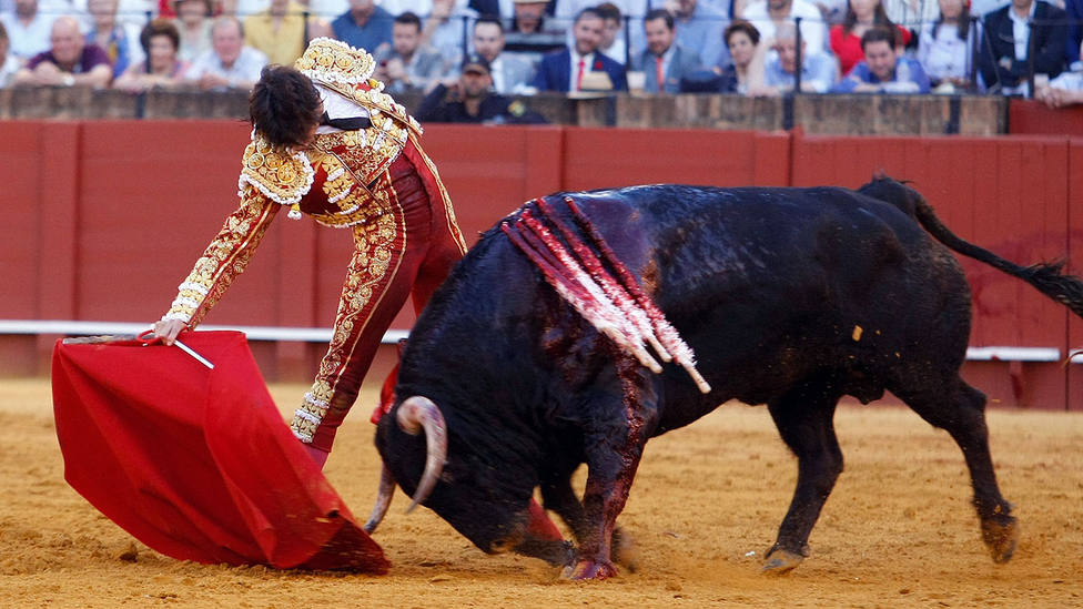 Rotuno derechazo de Roca Rey al sexto toro de Cuvillo al que cortó las dos orejas