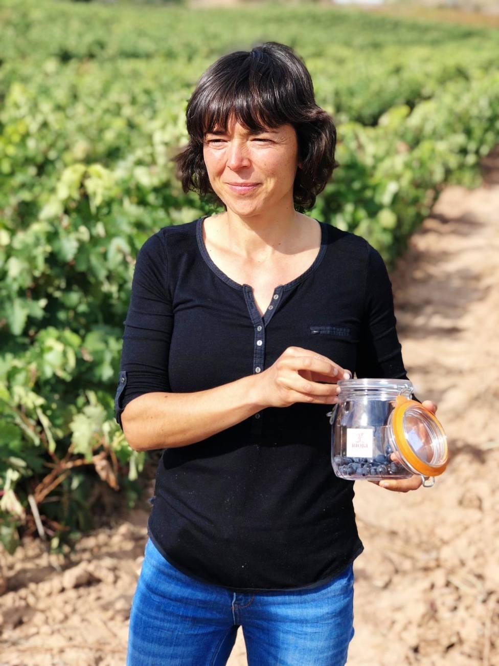 El Consejo Regulador de la DO Rioja asegura que la cosecha de este año podría ser histórica