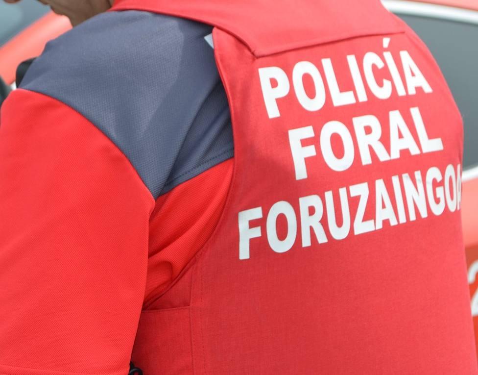 Doce personas detenidas por Policía Foral esta semana en Navarra