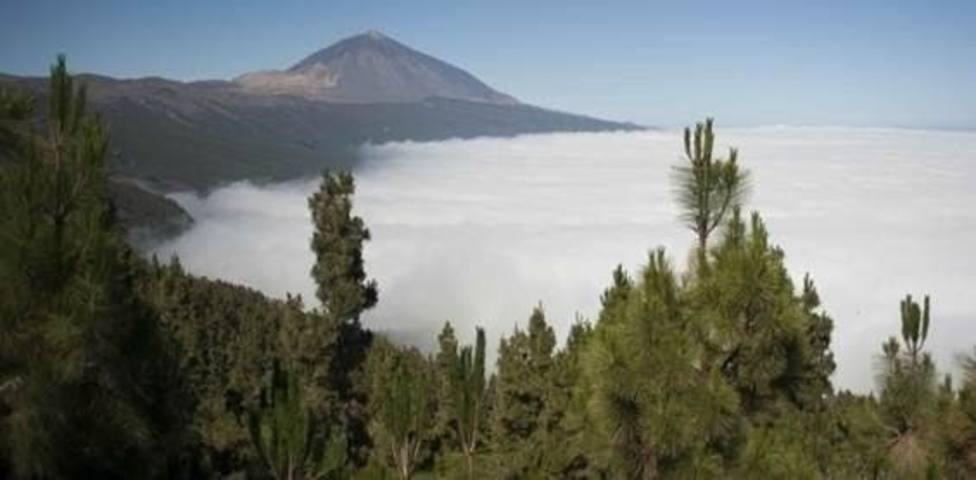 Teide y Doñana son los más amenazados de la Red de Parques Nacionales de España, según el CSIC