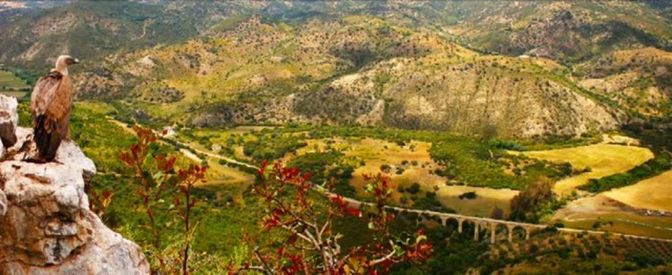La antigua línea férrea entre El Puerto y Sanlúcar será nueva Vía Verde