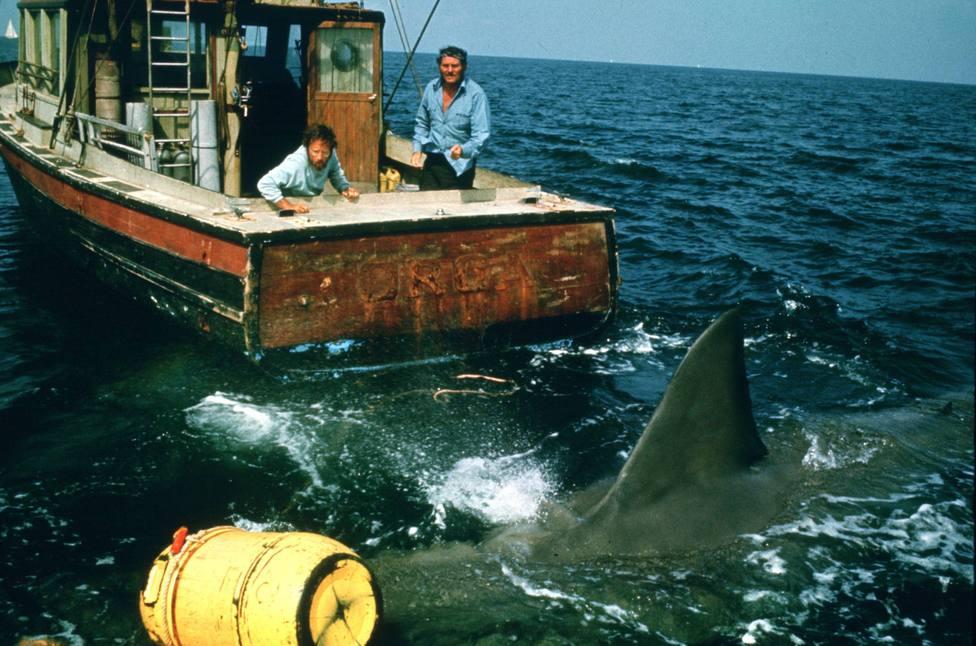 ctv-cac-tiburon-9