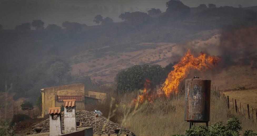 Más de 400 hectáreas quemadas por el incendio forestal en la localidad onubense de Villarrasa
