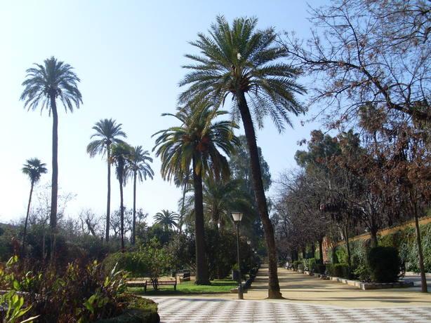 Jardines de Murillo