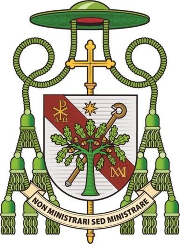 Escudo del nuevo obispo de Ávila, José María Gil Tamayo