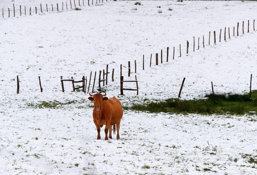 Una estación del pirineo catalán registra un récord histórico de frío en España: -34,1º