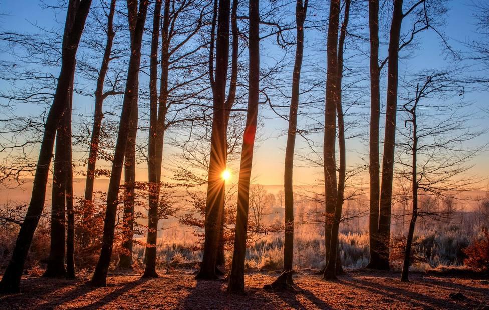 Evangelio 17 febrero: ¿Por qué esta generación reclama un signo?